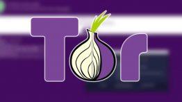Tor Browser Nedir?