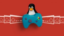 Linux Pazar Payı, Steam Anketlerinde Yıllar Sonra %1'in Üzerine Çıktı